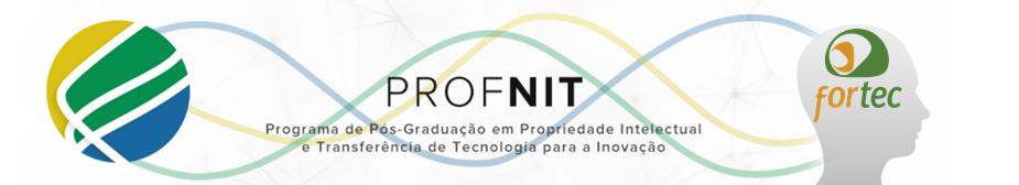 Logo ProfNIT